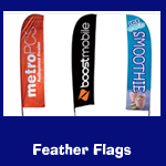 feather-thumb.png
